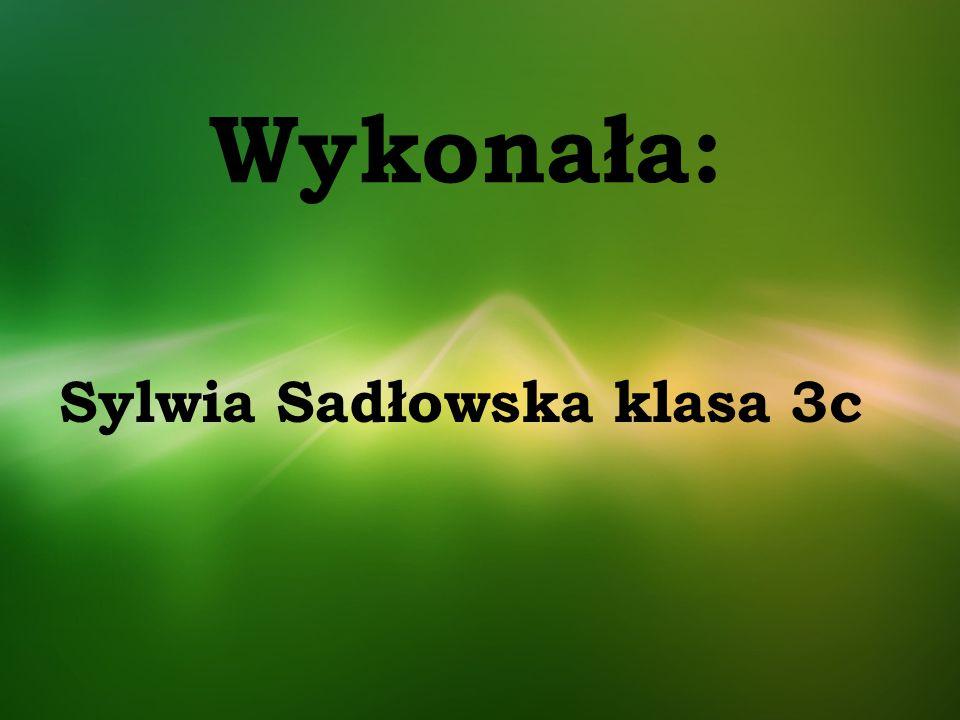 Wykonała: Sylwia Sadłowska klasa 3c