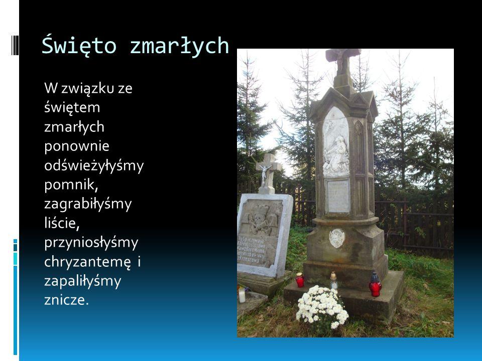 Święto zmarłych W związku ze świętem zmarłych ponownie odświeżyłyśmy pomnik, zagrabiłyśmy liście, przyniosłyśmy chryzantemę i zapaliłyśmy znicze.