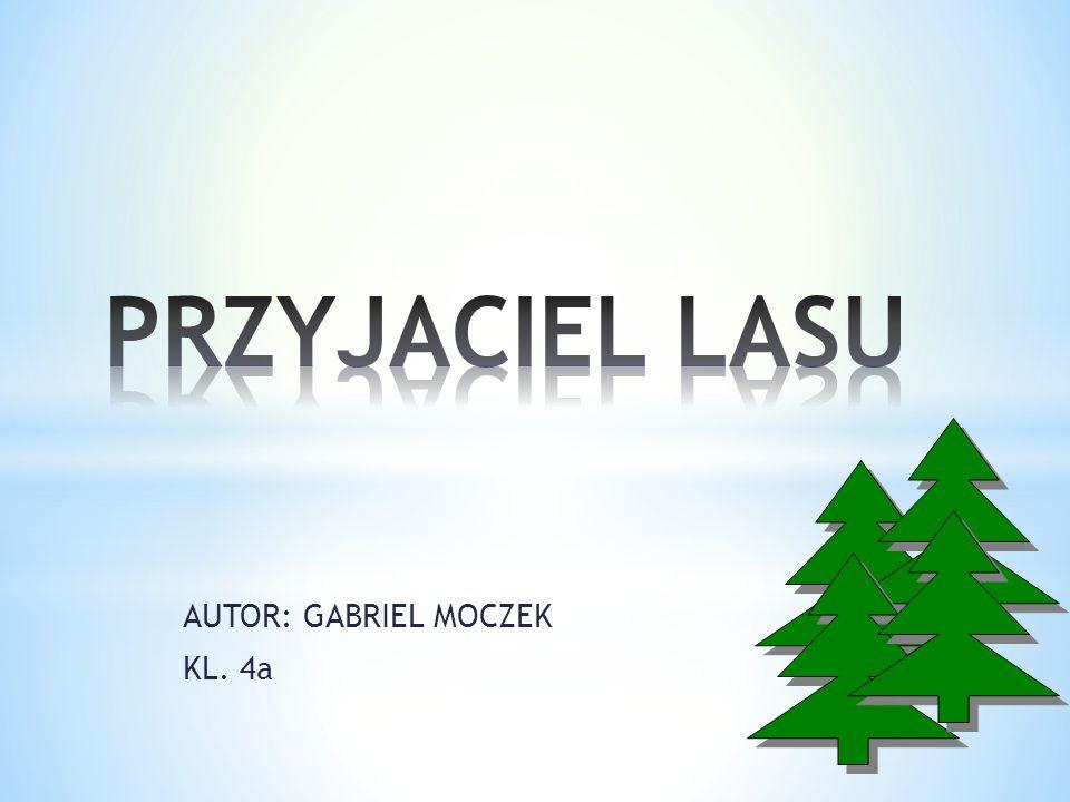 AUTOR: GABRIEL MOCZEK KL. 4a