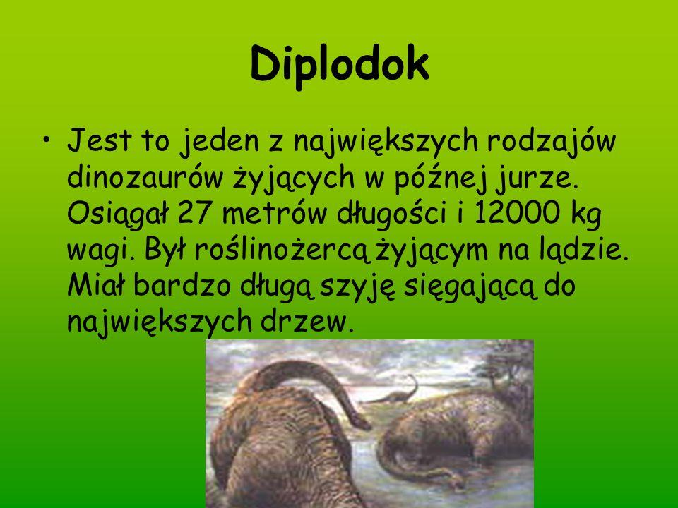 Diplodok Jest to jeden z największych rodzajów dinozaurów żyjących w późnej jurze. Osiągał 27 metrów długości i 12000 kg wagi. Był roślinożercą żyjący