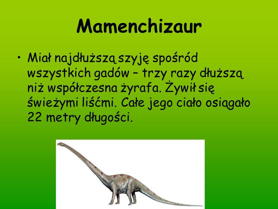 Mamenchizaur Miał najdłuższą szyję spośród wszystkich gadów – trzy razy dłuższą niż współczesna żyrafa. Żywił się świeżymi liśćmi. Całe jego ciało osi