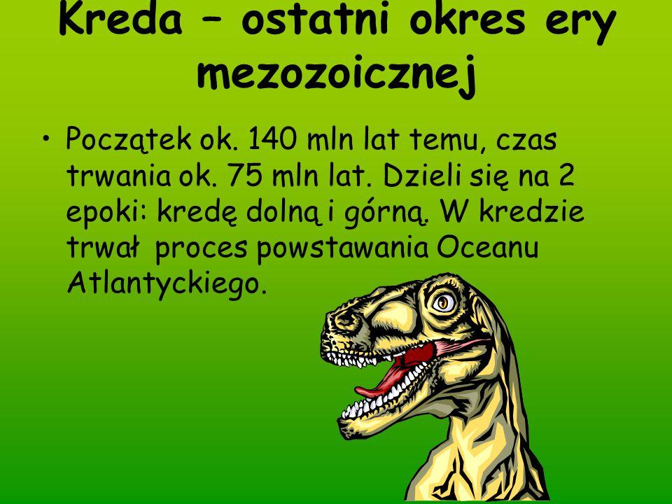 Kreda – ostatni okres ery mezozoicznej Początek ok. 140 mln lat temu, czas trwania ok. 75 mln lat. Dzieli się na 2 epoki: kredę dolną i górną. W kredz