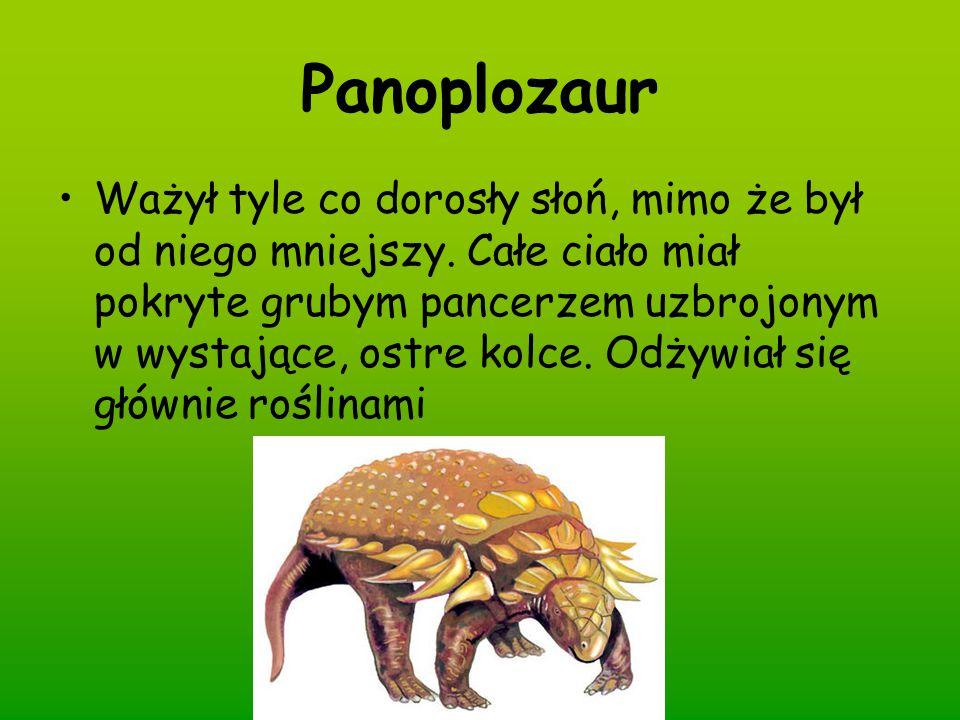 Panoplozaur Ważył tyle co dorosły słoń, mimo że był od niego mniejszy. Całe ciało miał pokryte grubym pancerzem uzbrojonym w wystające, ostre kolce. O