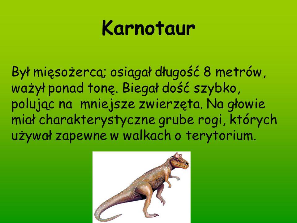Karnotaur Był mięsożercą; osiągał długość 8 metrów, ważył ponad tonę. Biegał dość szybko, polując na mniejsze zwierzęta. Na głowie miał charakterystyc
