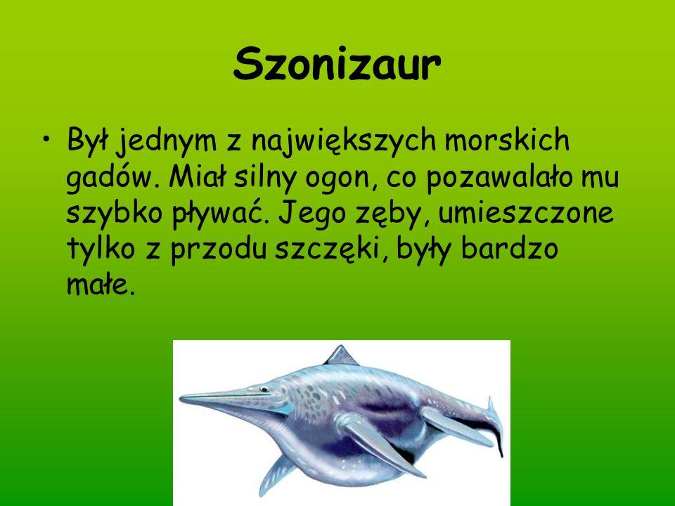 Szonizaur Był jednym z największych morskich gadów. Miał silny ogon, co pozawalało mu szybko pływać. Jego zęby, umieszczone tylko z przodu szczęki, by