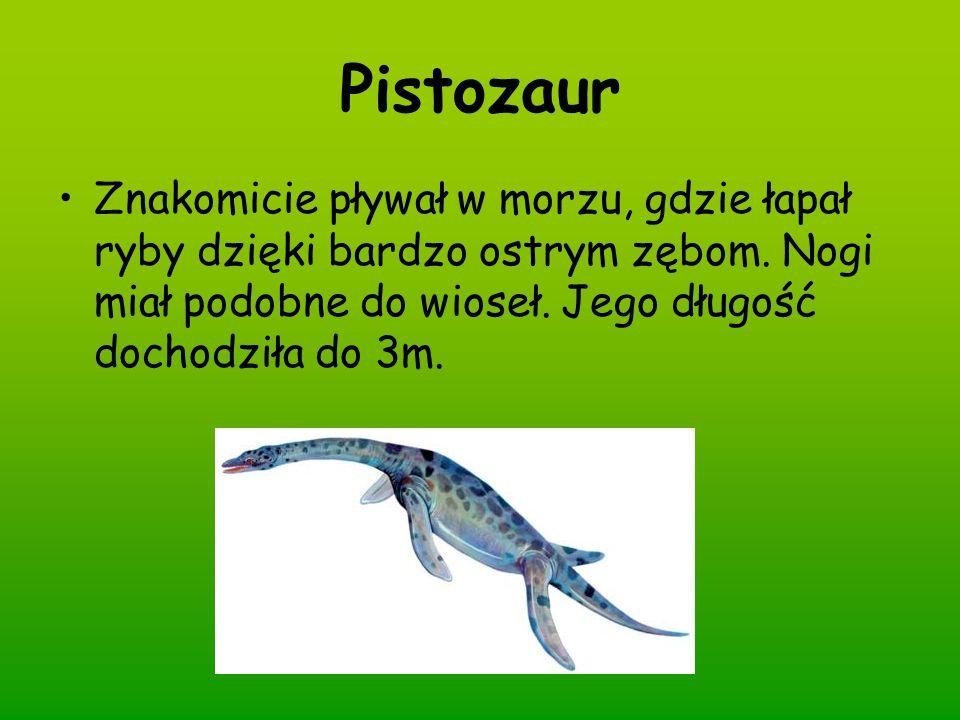 Pistozaur Znakomicie pływał w morzu, gdzie łapał ryby dzięki bardzo ostrym zębom. Nogi miał podobne do wioseł. Jego długość dochodziła do 3m.