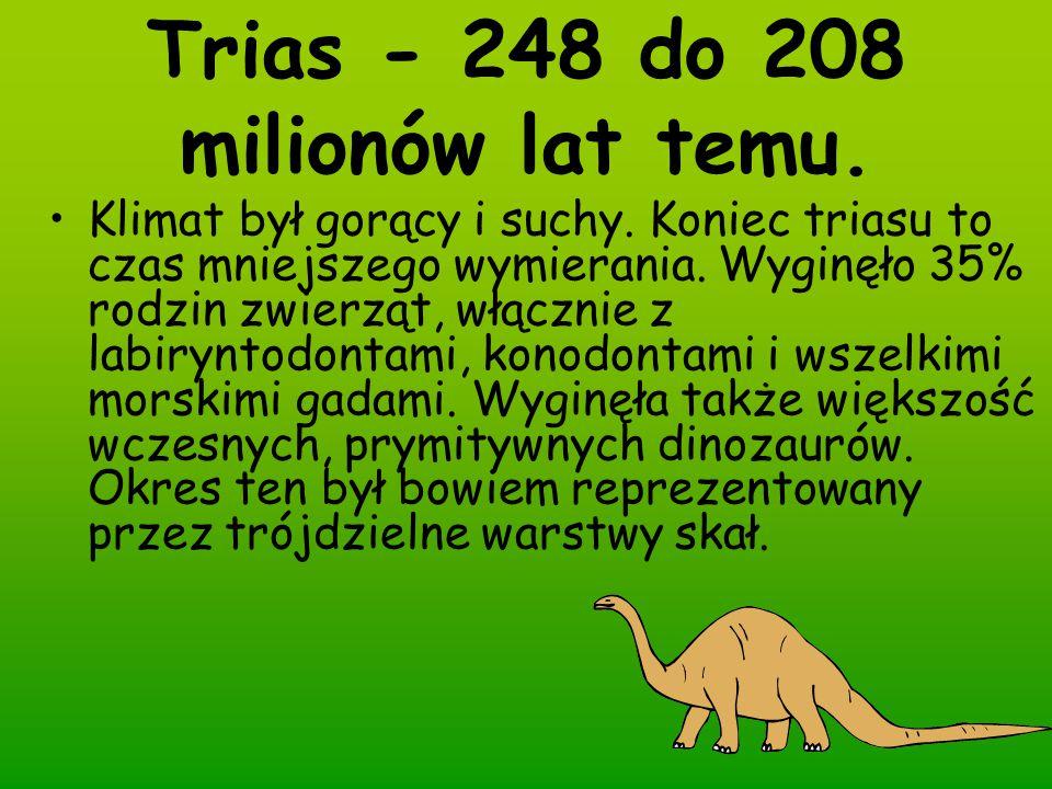 Trias - 248 do 208 milionów lat temu. Klimat był gorący i suchy. Koniec triasu to czas mniejszego wymierania. Wyginęło 35% rodzin zwierząt, włącznie z