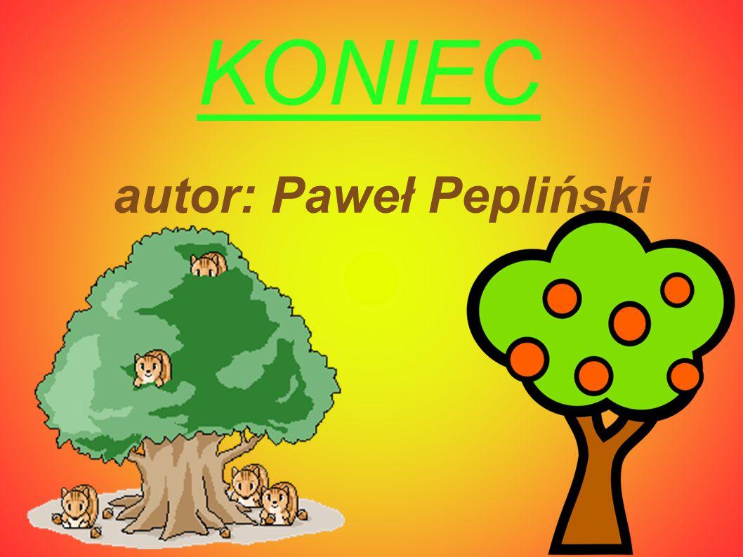 KONIEC autor: Paweł Pepliński