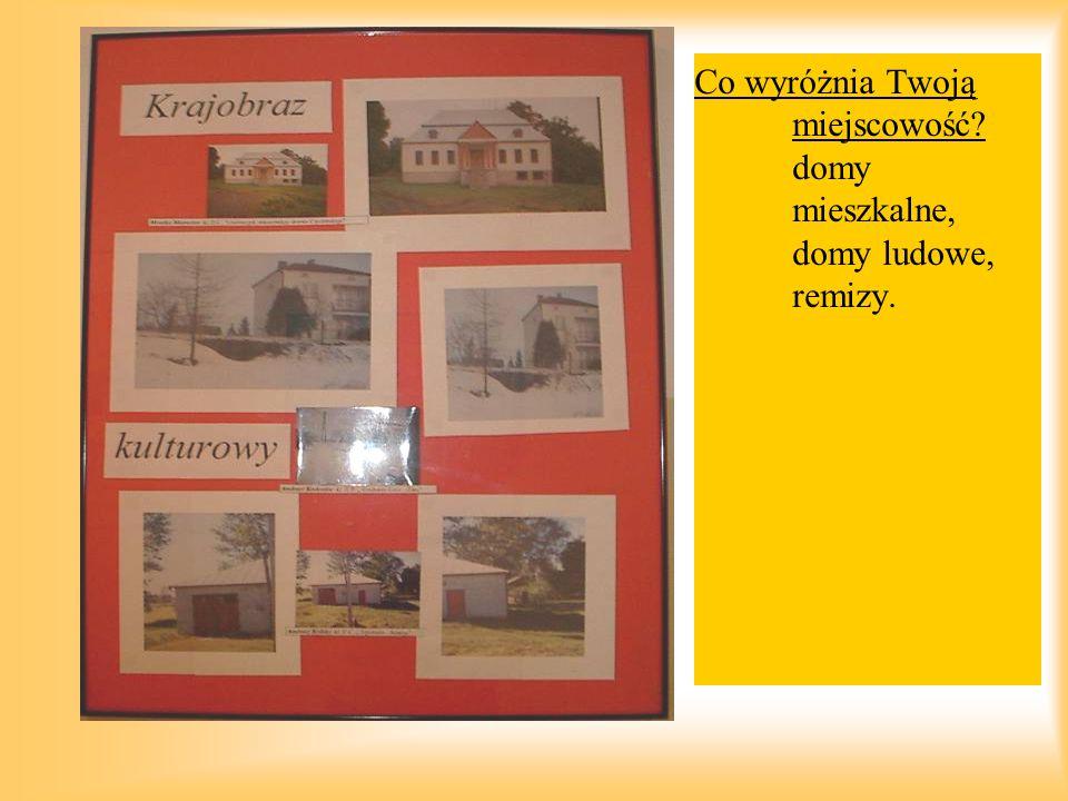 Co wyróżnia Twoją miejscowość? domy mieszkalne, domy ludowe, remizy.