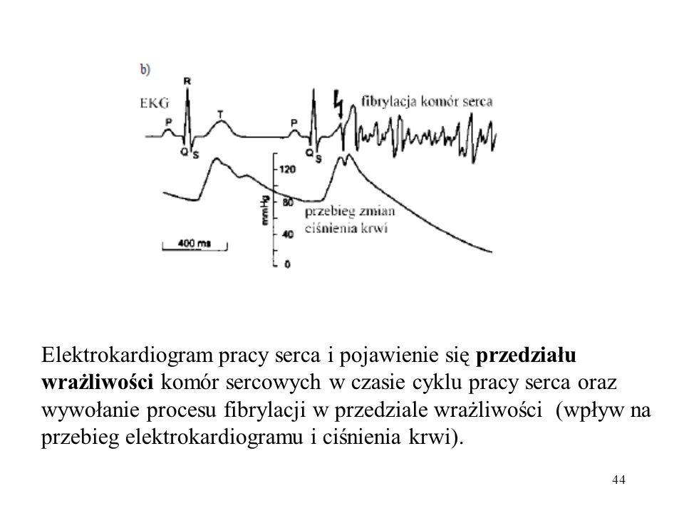 44 Elektrokardiogram pracy serca i pojawienie się przedziału wrażliwości komór sercowych w czasie cyklu pracy serca oraz wywołanie procesu fibrylacji