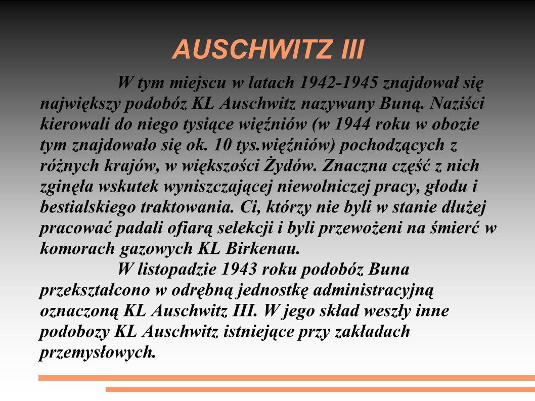 AUSCHWITZ III W tym miejscu w latach 1942-1945 znajdował się największy podobóz KL Auschwitz nazywany Buną. Naziści kierowali do niego tysiące więźnió