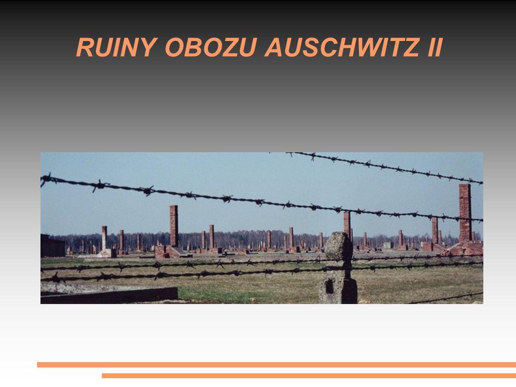RUINY OBOZU AUSCHWITZ II