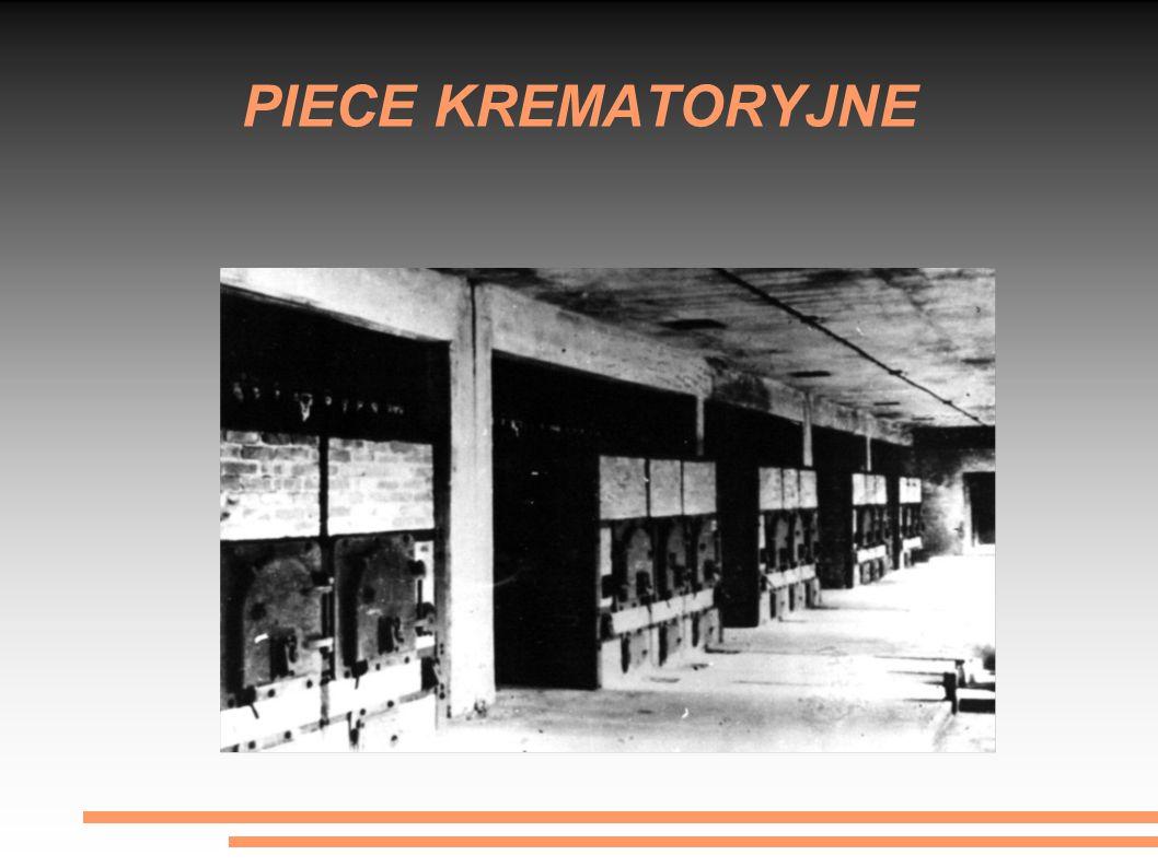 PODZIAŁ OBOZU Obóz Auschwitz II został podzielony na części: obóz kobiecy (sektory BIa i b) rejestracja i kwarantanna (BIIa) obóz rodzinny (BIIb) dla Żydów z Theresienstadt obóz męski (BIIc i d) obóz cygański (BIIe) odcinek szpitalny (BIIf) Kanada (BIIg) Meksyk (BIII) czerwony i biały domek – bunkry nr 1 i 2 – prowizoryczne komory gazowe; krematoria II, III, IV i V – zespół komór gazowych i pieców do spalania zwłok;