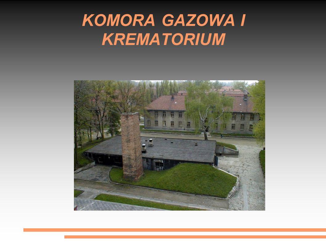 """""""OSTATECZNE ROZWIĄZANIE KWESTII ŻYDOWSKIEJ Latem 1941 Himmler wskazał Auschwitz jako miejsce ostatecznego rozwiązania kwestii żydowskiej ."""