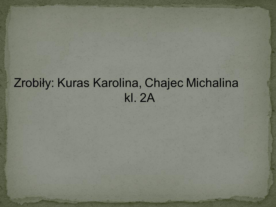 Zrobiły: Kuras Karolina, Chajec Michalina kl. 2A