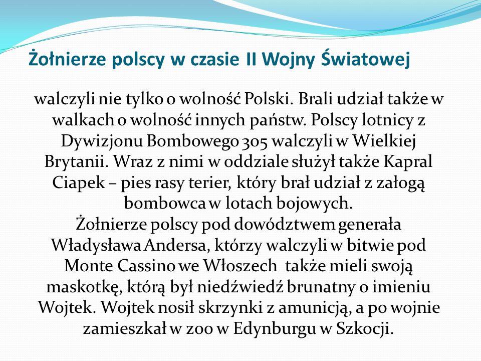 Żołnierze polscy w czasie II Wojny Światowej walczyli nie tylko o wolność Polski. Brali udział także w walkach o wolność innych państw. Polscy lotnicy
