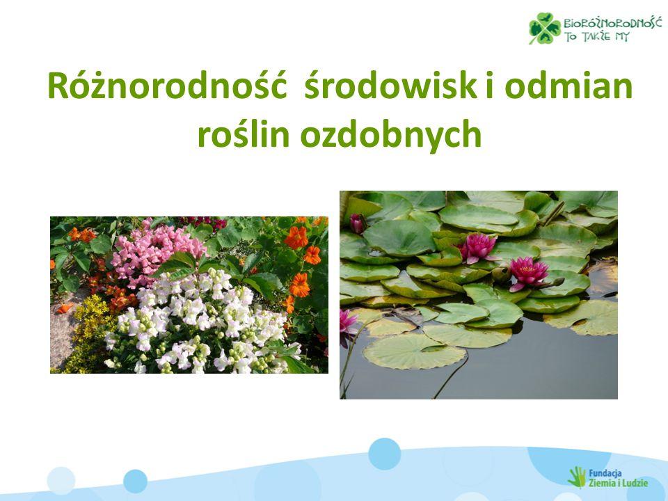 Różnorodność środowisk i odmian roślin ozdobnych