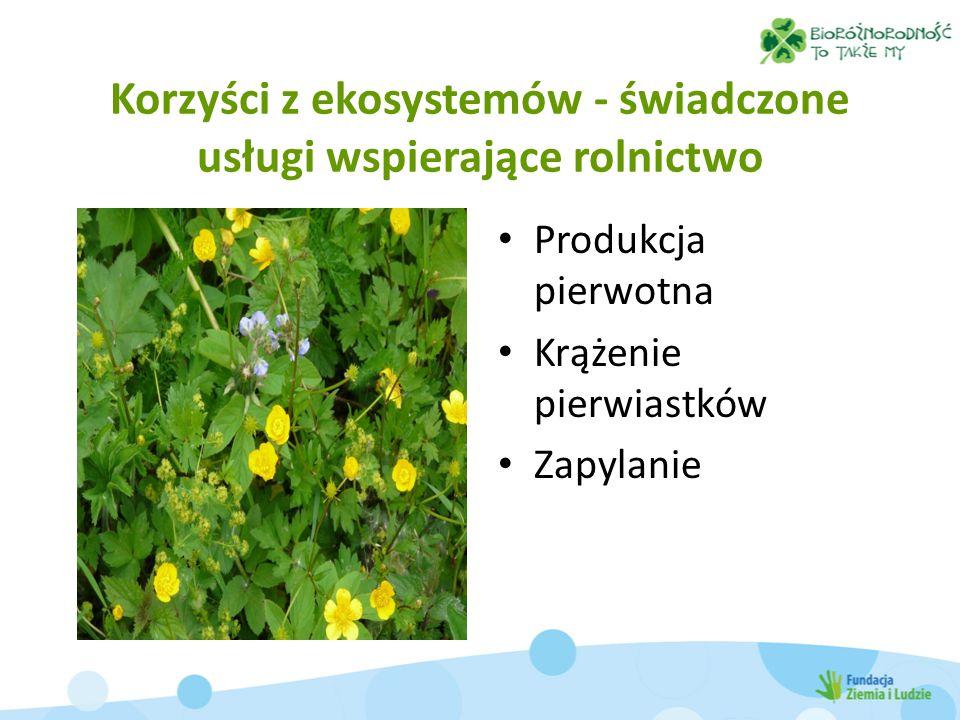 Korzyści z ekosystemów - świadczone usługi wspierające rolnictwo Produkcja pierwotna Krążenie pierwiastków Zapylanie