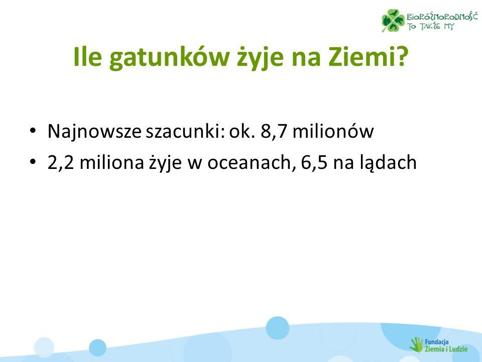 Ile gatunków żyje na Ziemi? Najnowsze szacunki: ok. 8,7 milionów 2,2 miliona żyje w oceanach, 6,5 na lądach