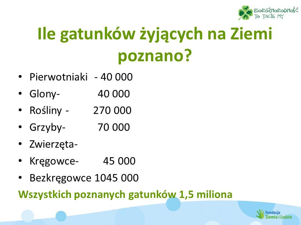 Ile gatunków żyjących na Ziemi poznano? Pierwotniaki - 40 000 Glony- 40 000 Rośliny - 270 000 Grzyby- 70 000 Zwierzęta- Kręgowce- 45 000 Bezkręgowce 1