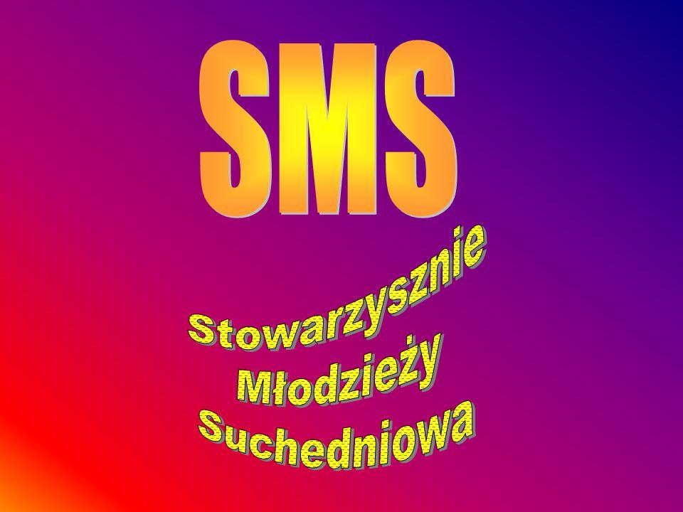Podsumowanie roku pracy SMSu