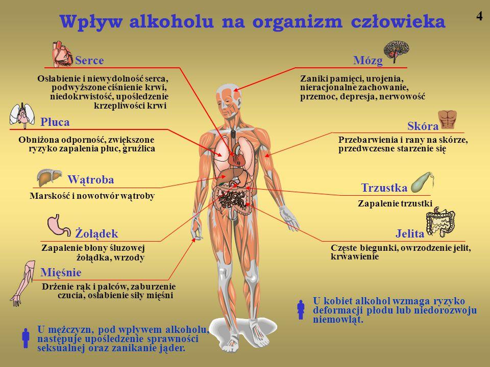 5 Około 800 tys.ludzi jest uzależnionych od alkoholu.