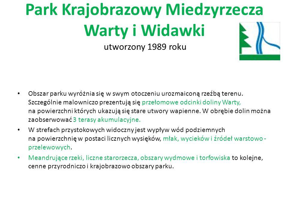 Park Krajobrazowy Miedzyrzecza Warty i Widawki utworzony 1989 roku Obszar parku wyróżnia się w swym otoczeniu urozmaiconą rzeźbą terenu. Szczególnie m