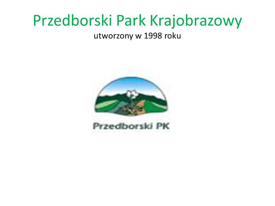 Przedborski Park Krajobrazowy utworzony w 1998 roku