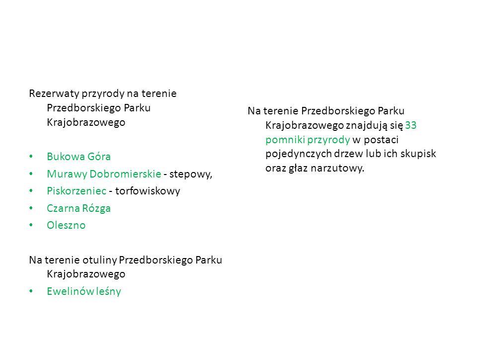 Rezerwaty przyrody na terenie Przedborskiego Parku Krajobrazowego Bukowa Góra Murawy Dobromierskie - stepowy, Piskorzeniec - torfowiskowy Czarna Rózga