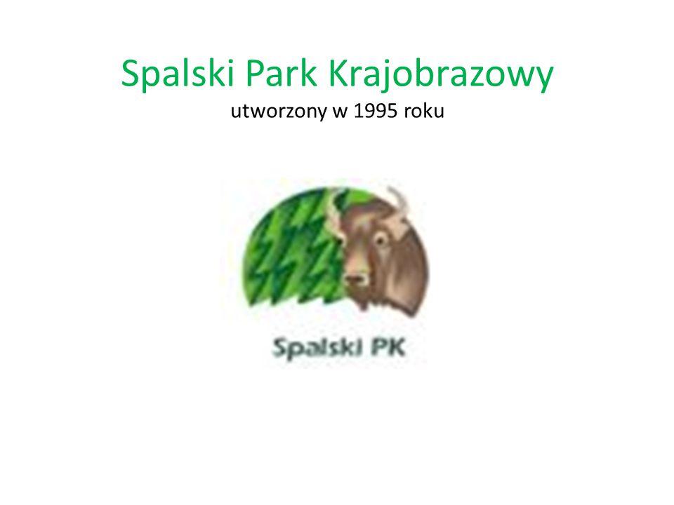 Spalski Park Krajobrazowy utworzony w 1995 roku