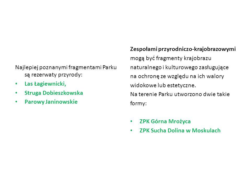Najlepiej poznanymi fragmentami Parku są rezerwaty przyrody: Las Łagiewnicki, Struga Dobieszkowska Parowy Janinowskie Zespołami przyrodniczo-krajobraz