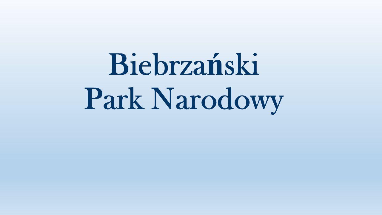 Biebrza ń ski Park Narodowy jest najwi ę kszym polskim parkiem narodowym.