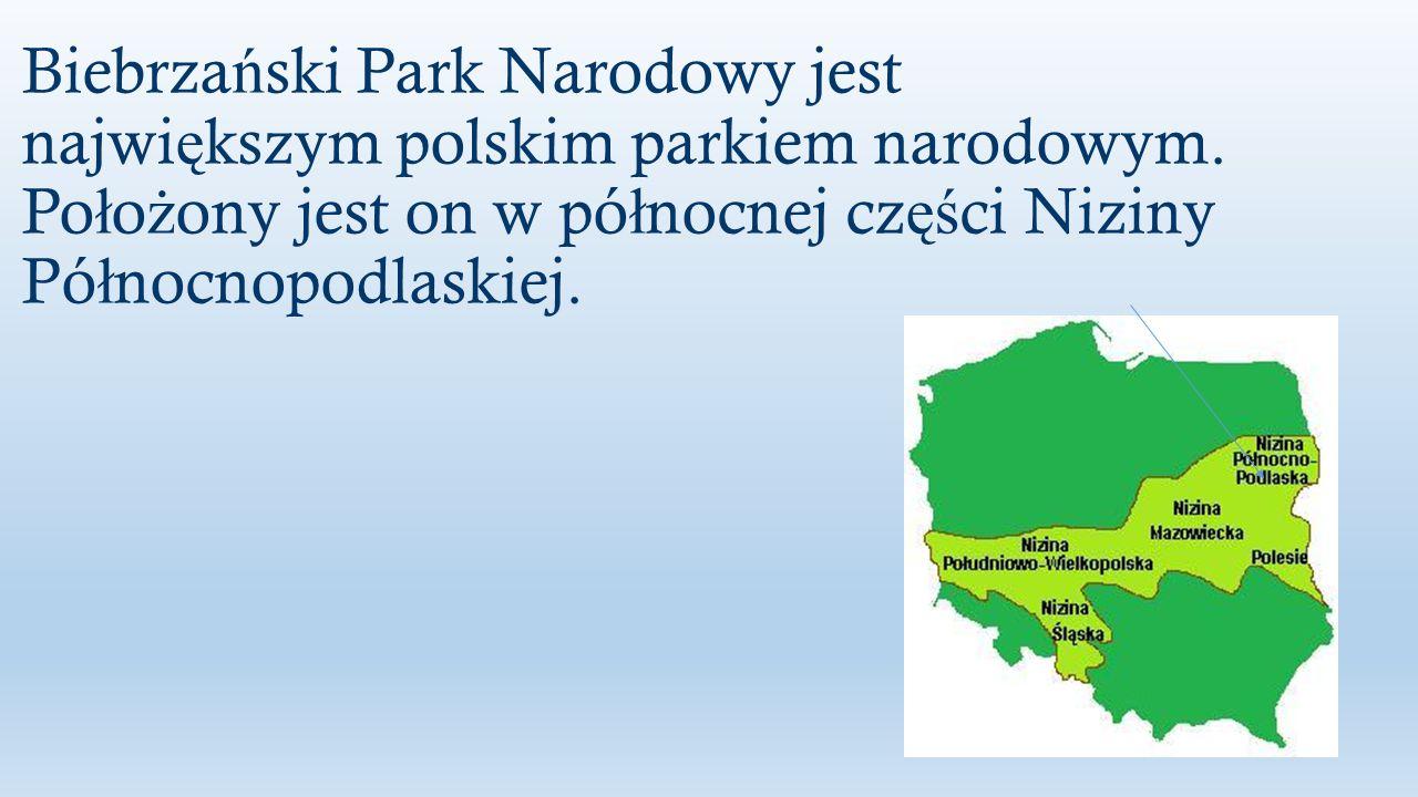 Park ten obejmuje dolinę Biebrzy, począwszy od jej źródeł, a skończywszy na ujściu do Narwi.
