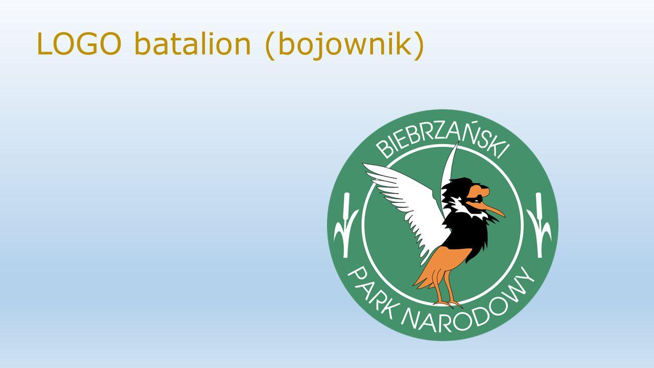 Najcenniejszym walorem parku jest szeroka dolina silnie meandrującej rzeki Biebrzy wraz z największym zespołem torfowisk w Polsce, zwanych Bagnami Biebrzańskimi.