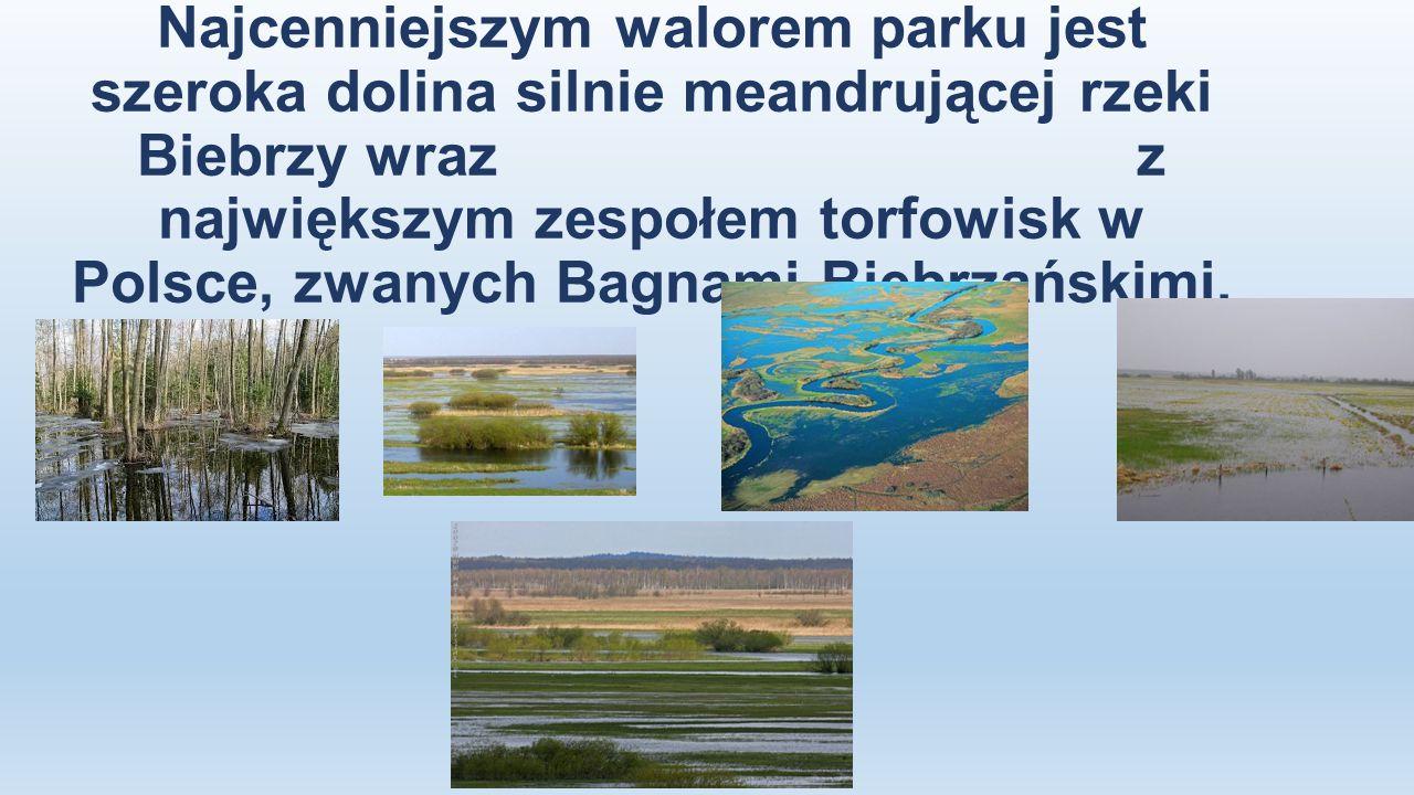 Najcenniejszym walorem parku jest szeroka dolina silnie meandrującej rzeki Biebrzy wraz z największym zespołem torfowisk w Polsce, zwanych Bagnami Bie