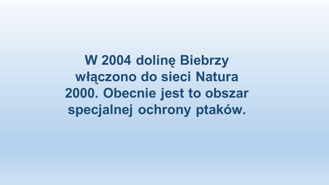 W 2004 dolinę Biebrzy włączono do sieci Natura 2000. Obecnie jest to obszar specjalnej ochrony ptaków.
