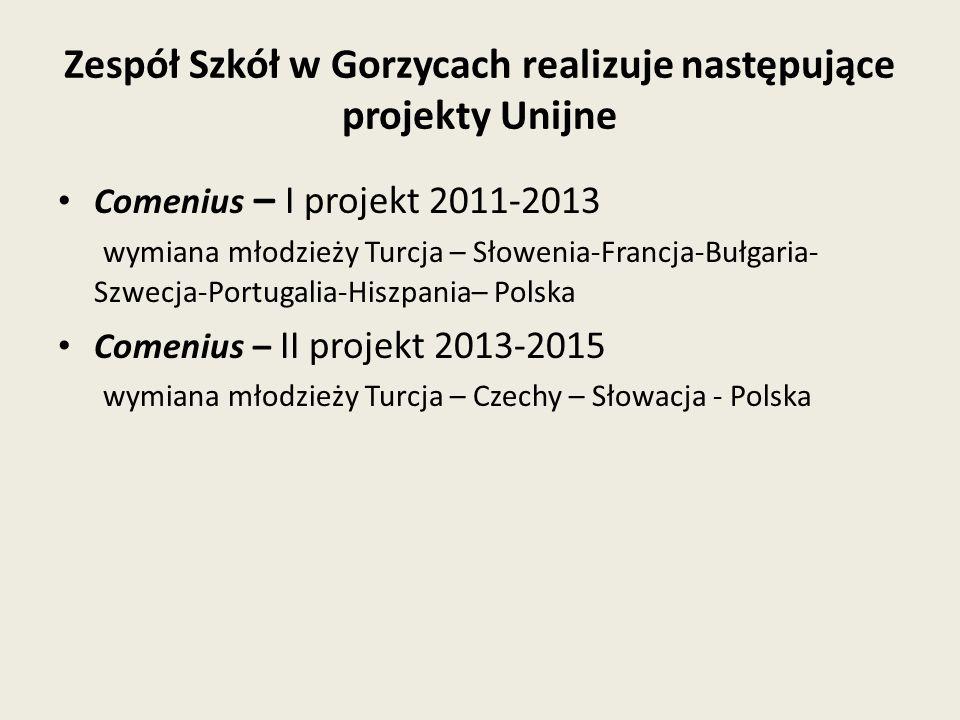 Zespół Szkół w Gorzycach realizuje następujące projekty Unijne Comenius – I projekt 2011-2013 wymiana młodzieży Turcja – Słowenia-Francja-Bułgaria- Szwecja-Portugalia-Hiszpania– Polska Comenius – II projekt 2013-2015 wymiana młodzieży Turcja – Czechy – Słowacja - Polska