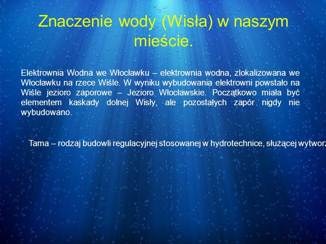 Elektrownia Wodna we Włocławku – elektrownia wodna, zlokalizowana we Włocławku na rzece Wiśle. W wyniku wybudowania elektrowni powstało na Wiśle jezio