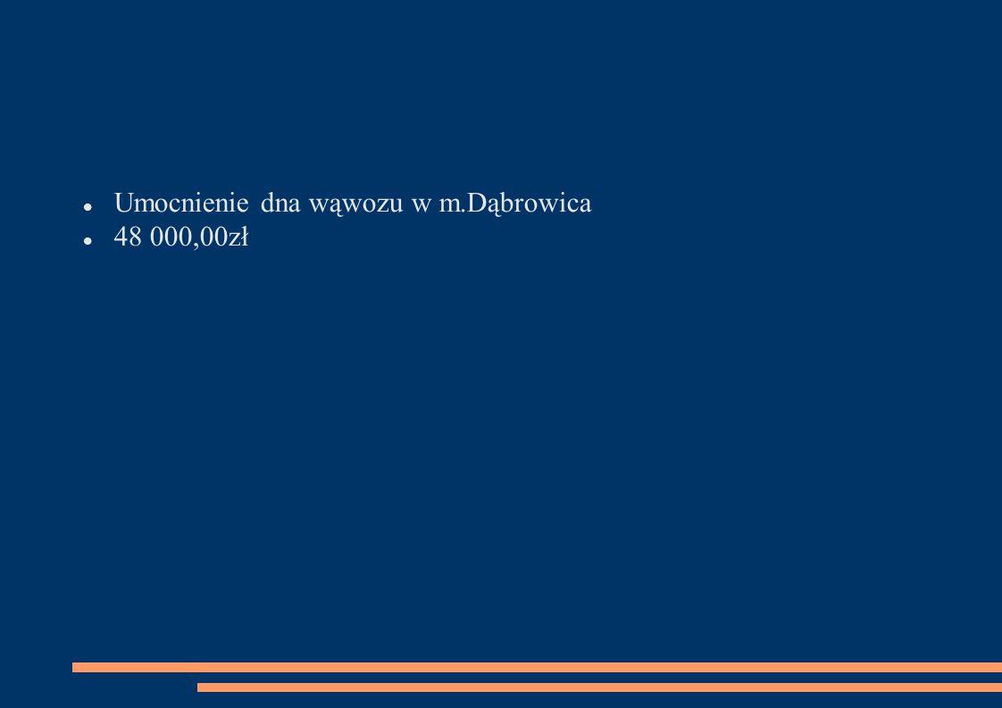 Umocnienie dna wąwozu w m.Dąbrowica 48 000,00zł