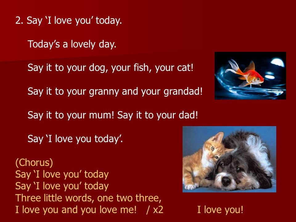 2.Say 'I love you' today. Today's a lovely day. Say it to your dog, your fish, your cat.