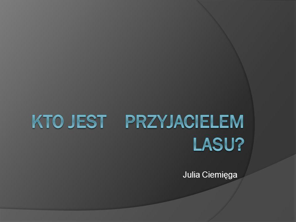 Julia Ciemięga