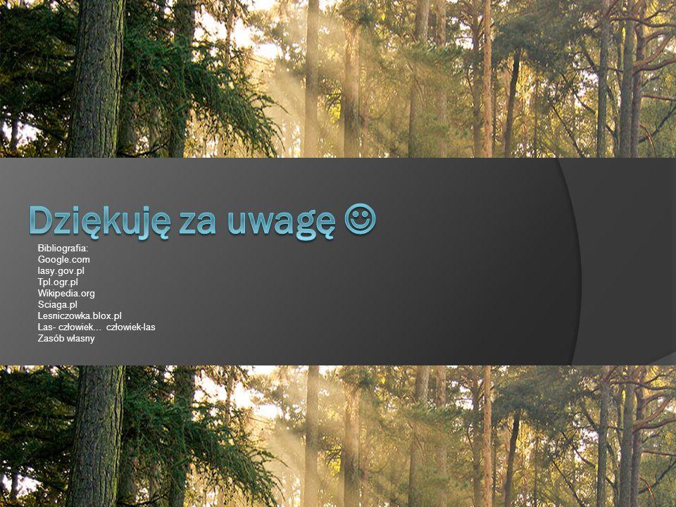 Bibliografia: Google.com lasy.gov.pl Tpl.ogr.pl Wikipedia.org Sciaga.pl Lesniczowka.blox.pl Las- człowiek… człowiek-las Zasób własny