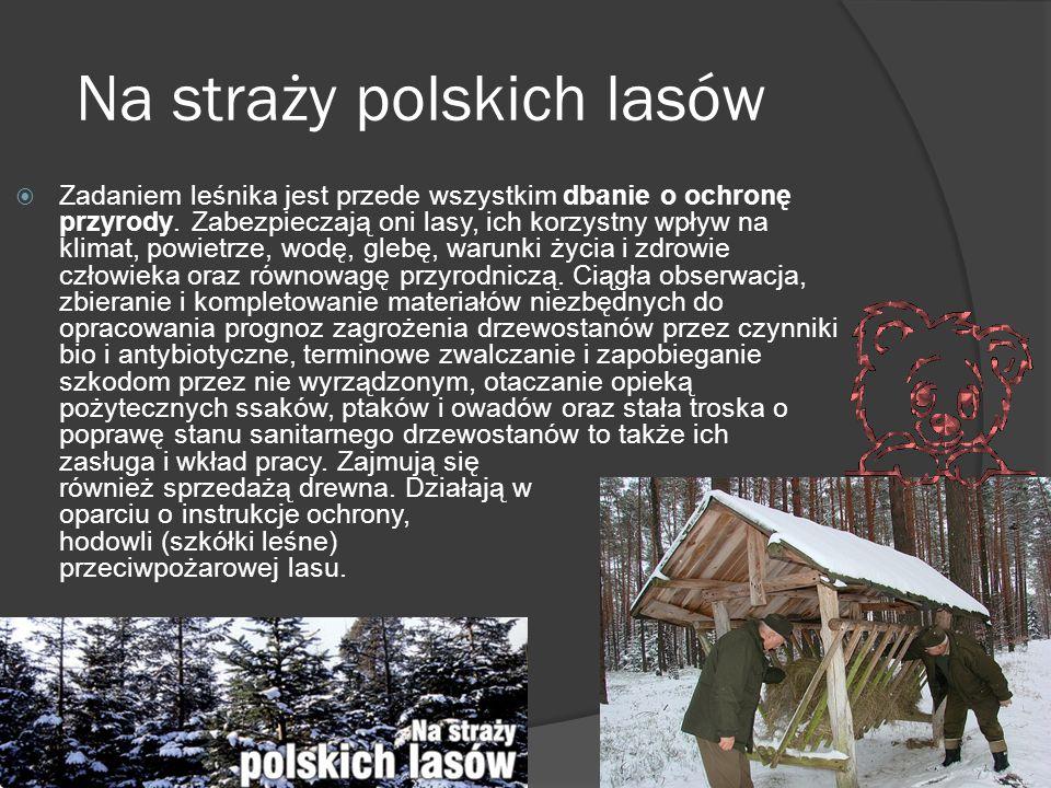 Na straży polskich lasów  Zadaniem leśnika jest przede wszystkim dbanie o ochronę przyrody.