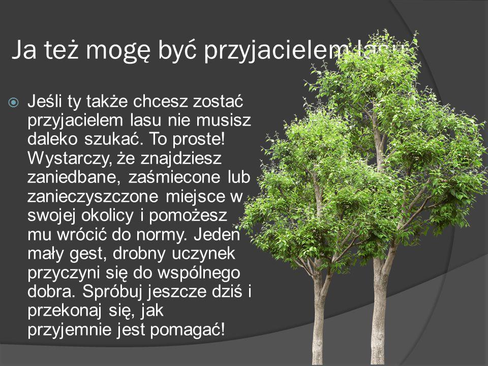 Ja też mogę być przyjacielem lasu  Jeśli ty także chcesz zostać przyjacielem lasu nie musisz daleko szukać.