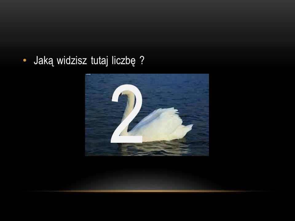 Jaką widzisz tutaj liczbę ? 2
