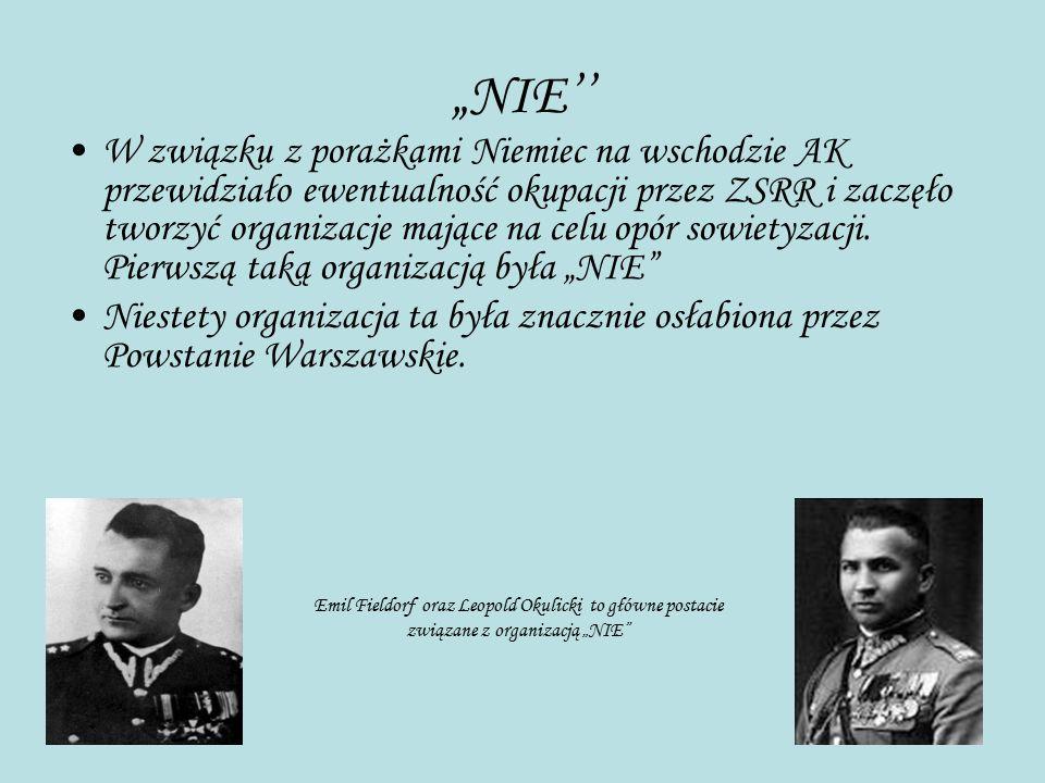 """""""NIE'' W związku z porażkami Niemiec na wschodzie AK przewidziało ewentualność okupacji przez ZSRR i zaczęło tworzyć organizacje mające na celu opór s"""