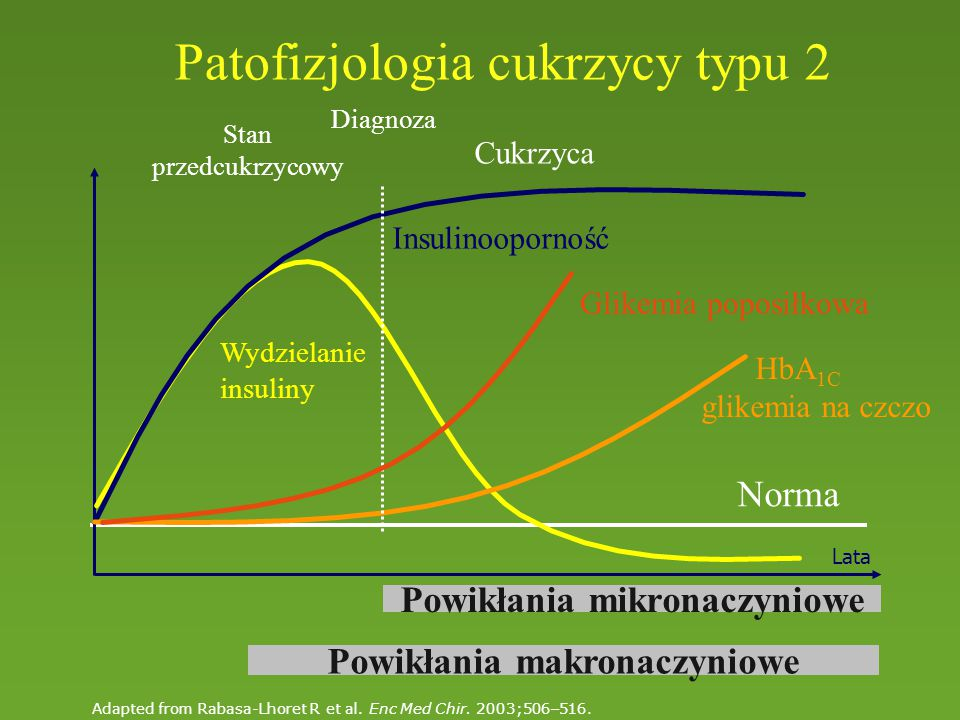 Lata Norma Wydzielanie insuliny Insulinooporność HbA 1C glikemia na czczo Glikemia poposiłkowa Diagnoza Powikłania makronaczyniowe Powikłania mikronaczyniowe Patofizjologia cukrzycy typu 2 Cukrzyca Stan przedcukrzycowy Adapted from Rabasa-Lhoret R et al.