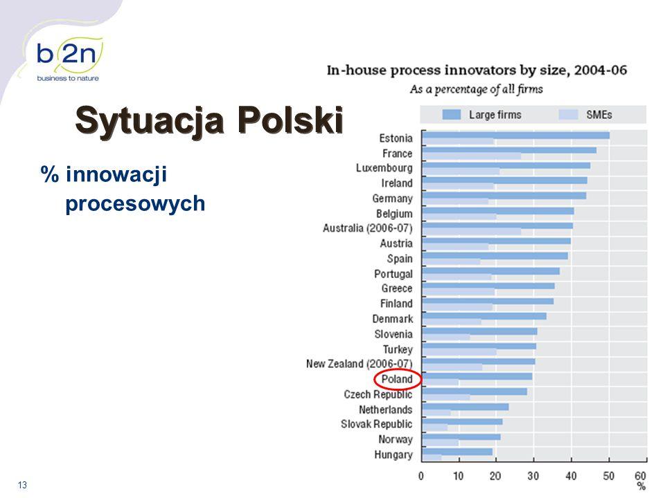 13 % innowacji procesowych Sytuacja Polski