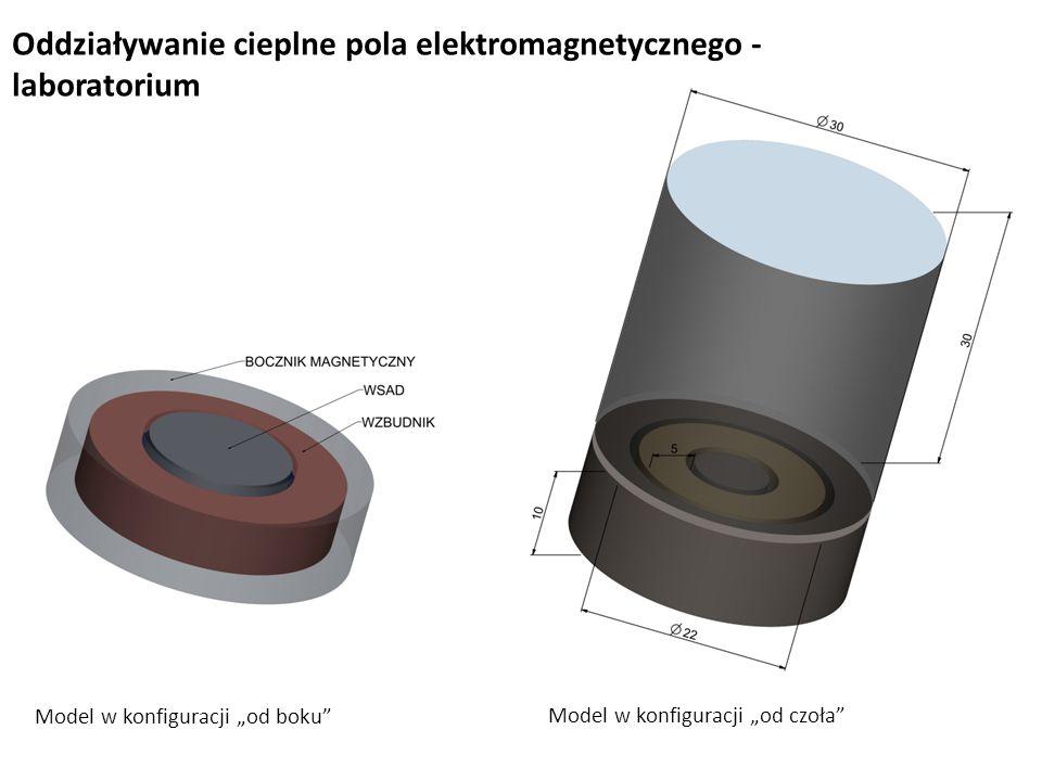 """Oddziaływanie cieplne pola elektromagnetycznego - laboratorium Model w konfiguracji """"od boku Model w konfiguracji """"od czoła"""