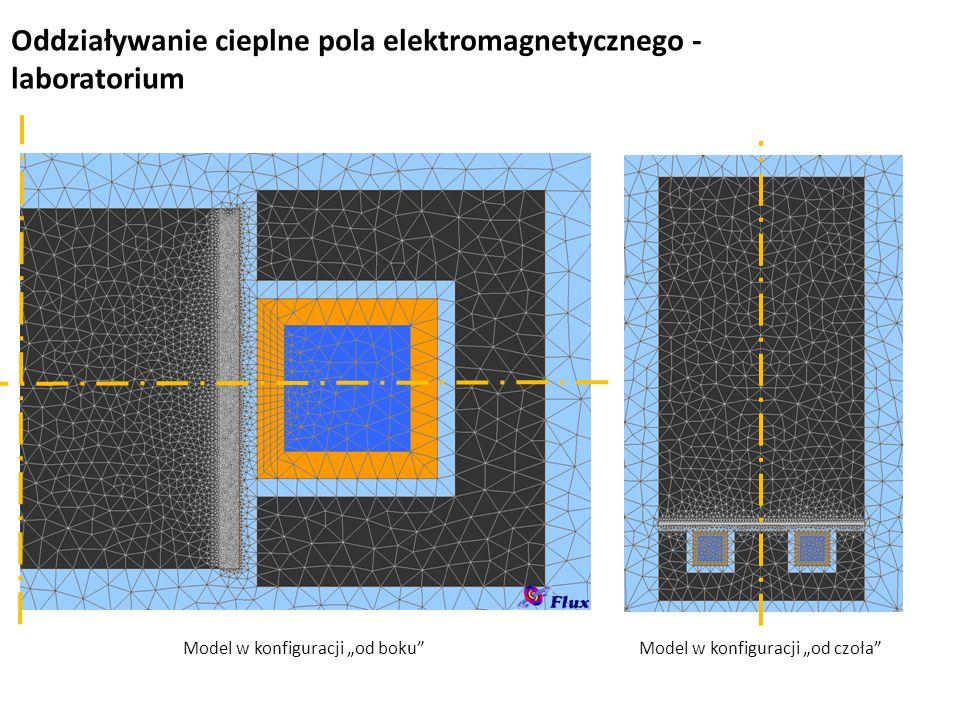 """Oddziaływanie cieplne pola elektromagnetycznego - laboratorium Model w konfiguracji """"od czoła""""Model w konfiguracji """"od boku"""""""